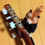 クラシックギターをキクタニ激安ペグに自分で交換!ペグ購入時に確認すべきことは?